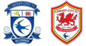 cardiff-city-red-blue-dragons-11